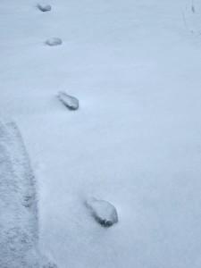 Flying Saucer Mystery Tracks