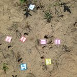 Tracking journal for June 13, 2021. Orangeville Sandpits